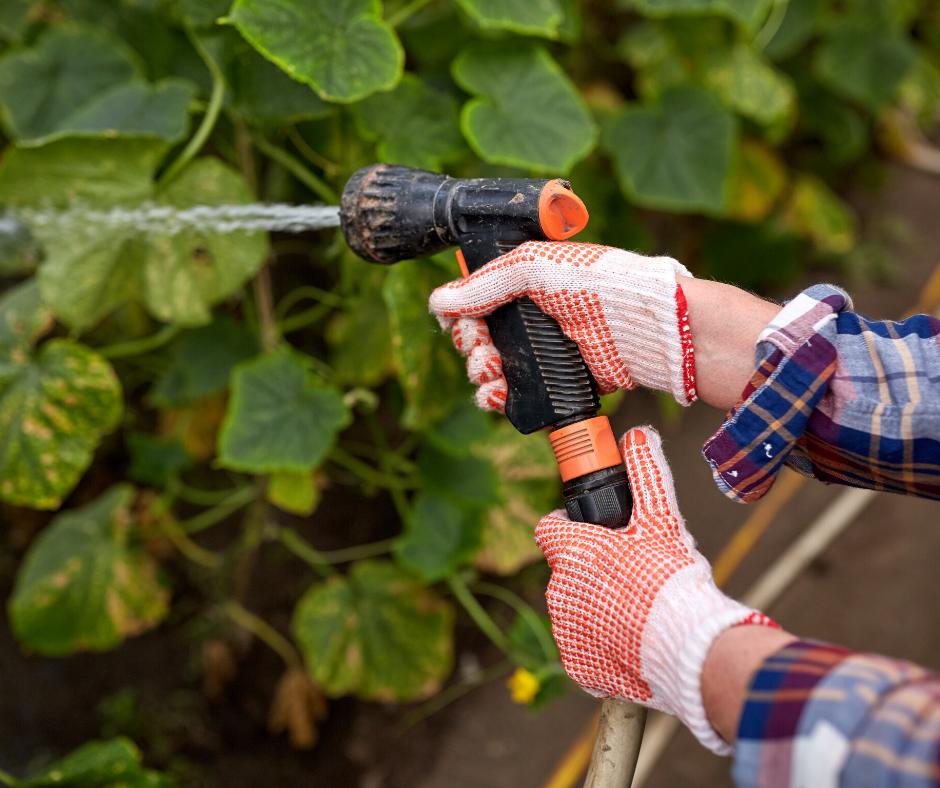 woman garden hose